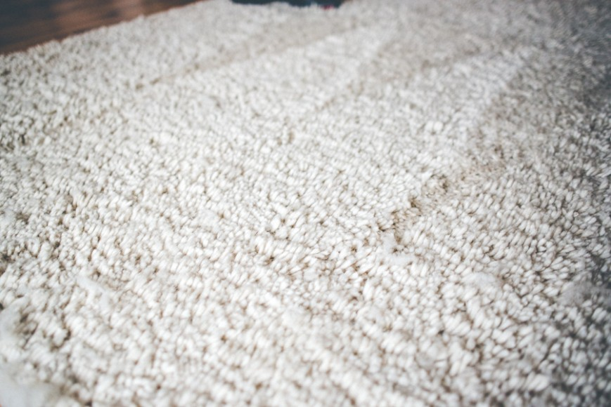 Even our deep pile rug which the Rug Doctor struggled to clean, the Bissell carpet cleaner made easy work of!